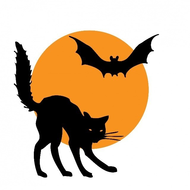 Bat Cat Moon